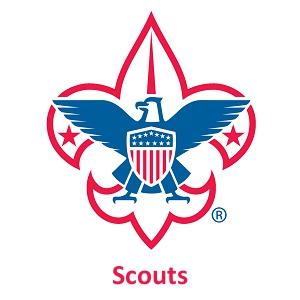 PL_scouts-thumbnail
